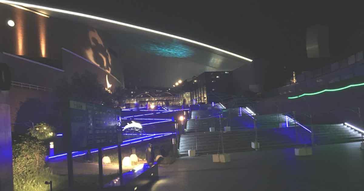 夜の海響館